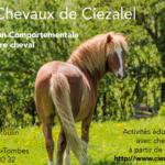 <strong>Les chevaux de Ciezalel</strong>